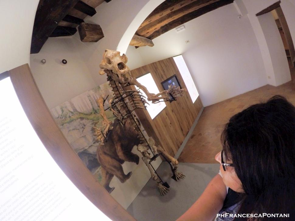 cetona_toscana_orso_delle_caverne