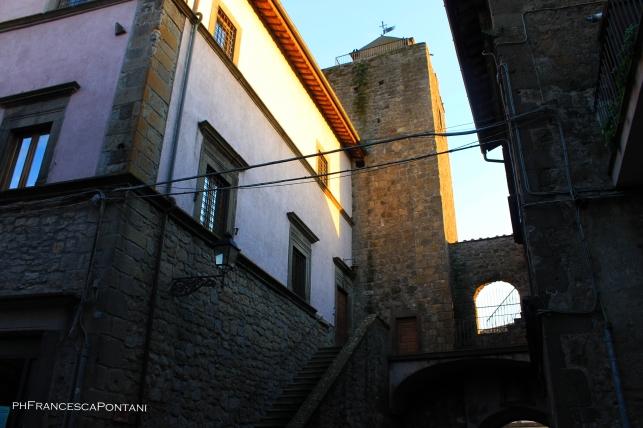 vitorchiano_palazzo_comunale