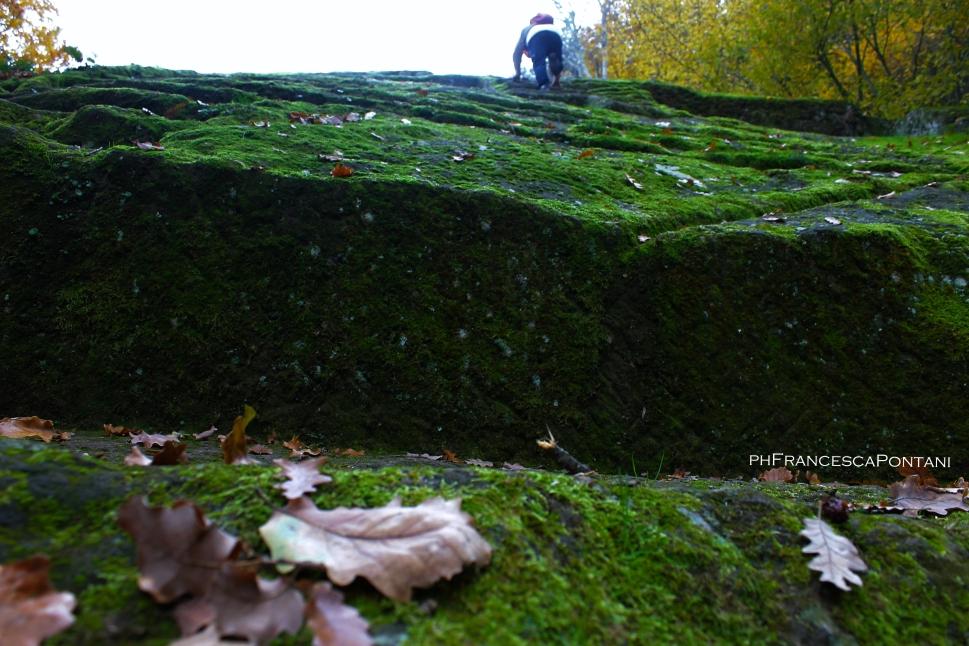 bomarzo_piramide_la_scalinata