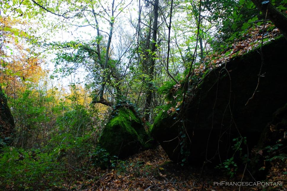 bomarzo_piramide_massi_e_muschio_verde
