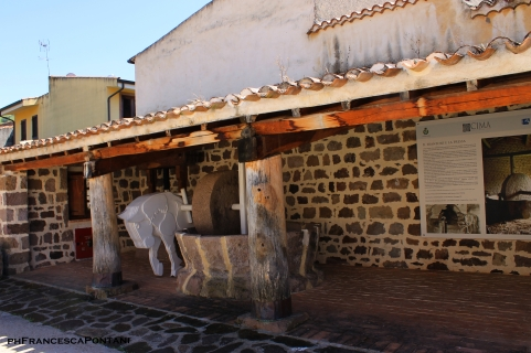 francesca_pontani_allai_museo_civico_sardegna