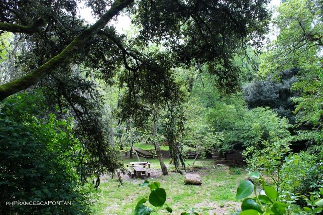 santu_lussurgiu_chiesa_san_leonardo_area_picnic_alberi_tavoli