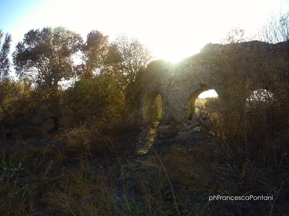 Civitavecchia_Acquedotto_di_Traiano_arcate